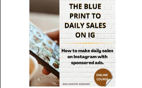 THE BLUEPRINT TO DAILY SALES ON IG - The step by step guide to daily alerts on Instagram