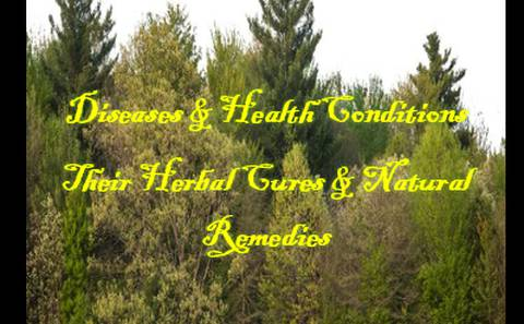Diseases & Health Conditions, Their Herbal Cures & Natural Remedies