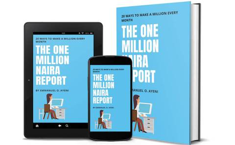 THE ONE MILLION NAIRA REPORT : 20 Ways To Make N1,000,000 Every Month