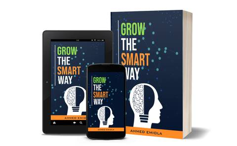 Linkedin : Grow the Smart Way